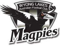 Wyong AFL, Coast Sport, Lakes AFL, Physio, killarney vale, terrigal, injury, hamstring
